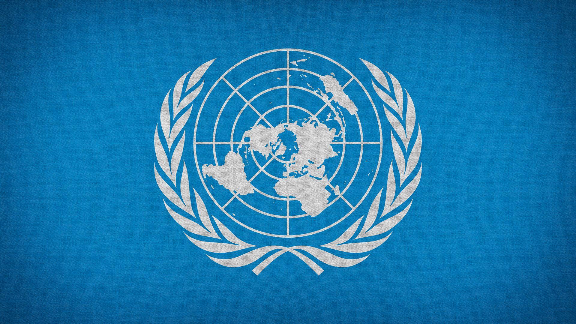 Bina-Qurani-Nama-Organisasi-Internasional-dan-Peran-Indonesia